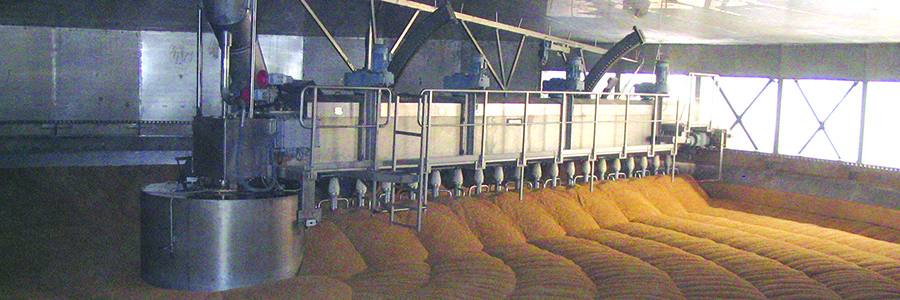Manufacturing malt with stainless steel